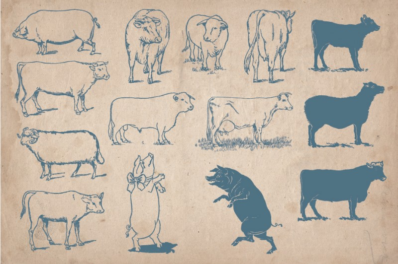 40 Farm Screen 1 2 01 3 4 5 33 Vintage Alchemy Illustrations