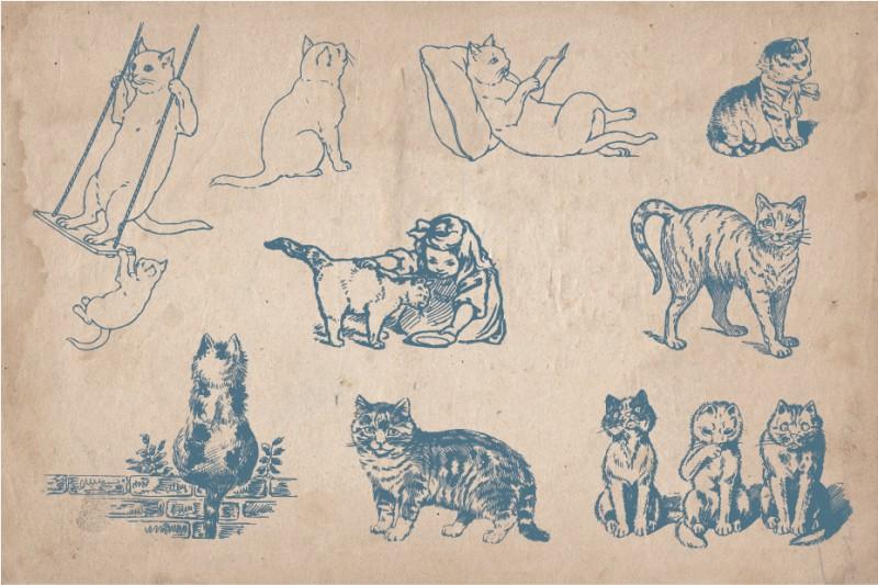 Cats_screen_3