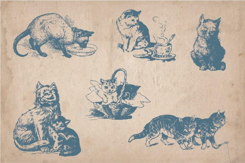 Cats_screen_4