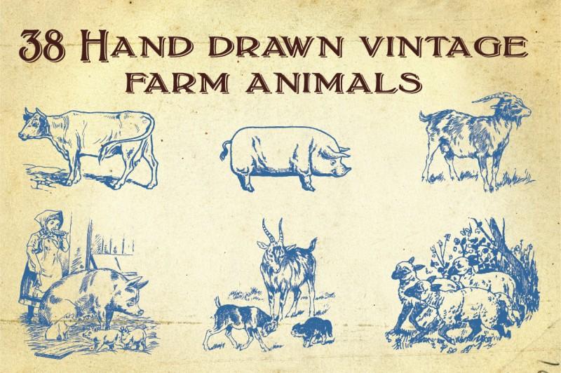 Farm_animals_1