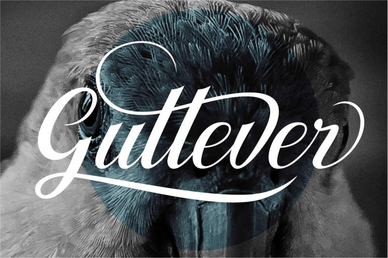 Gullever display 1