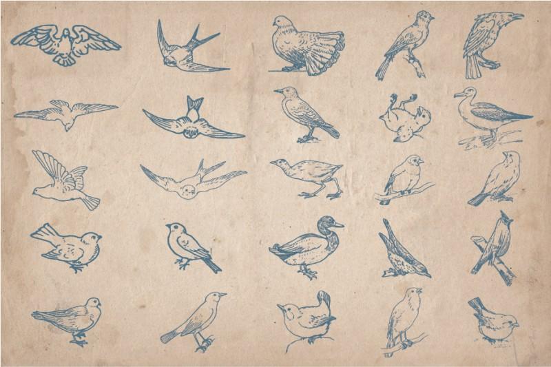 Hand_Drawn_Birds_Screen_2