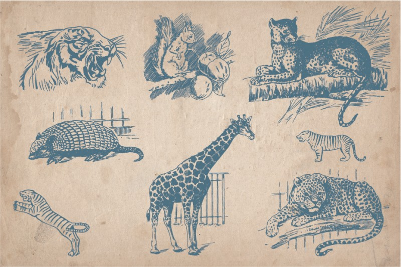 Vintage_wild_animals_3