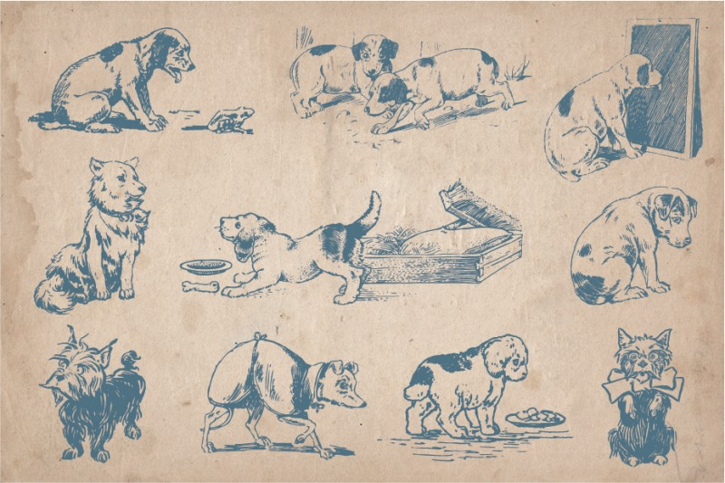dogs_screen_2
