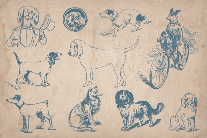 dogs_screen_3