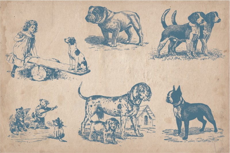 dogs_screen_5