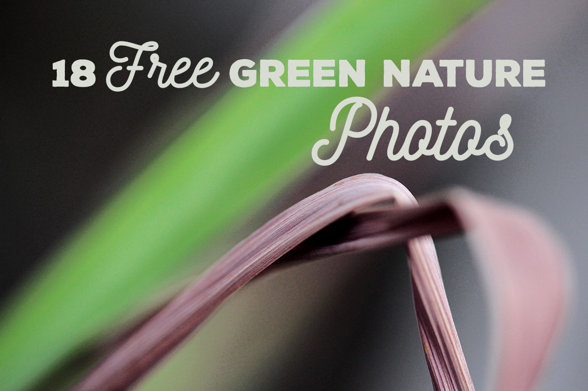 18FreeGreenNaturePhotos1