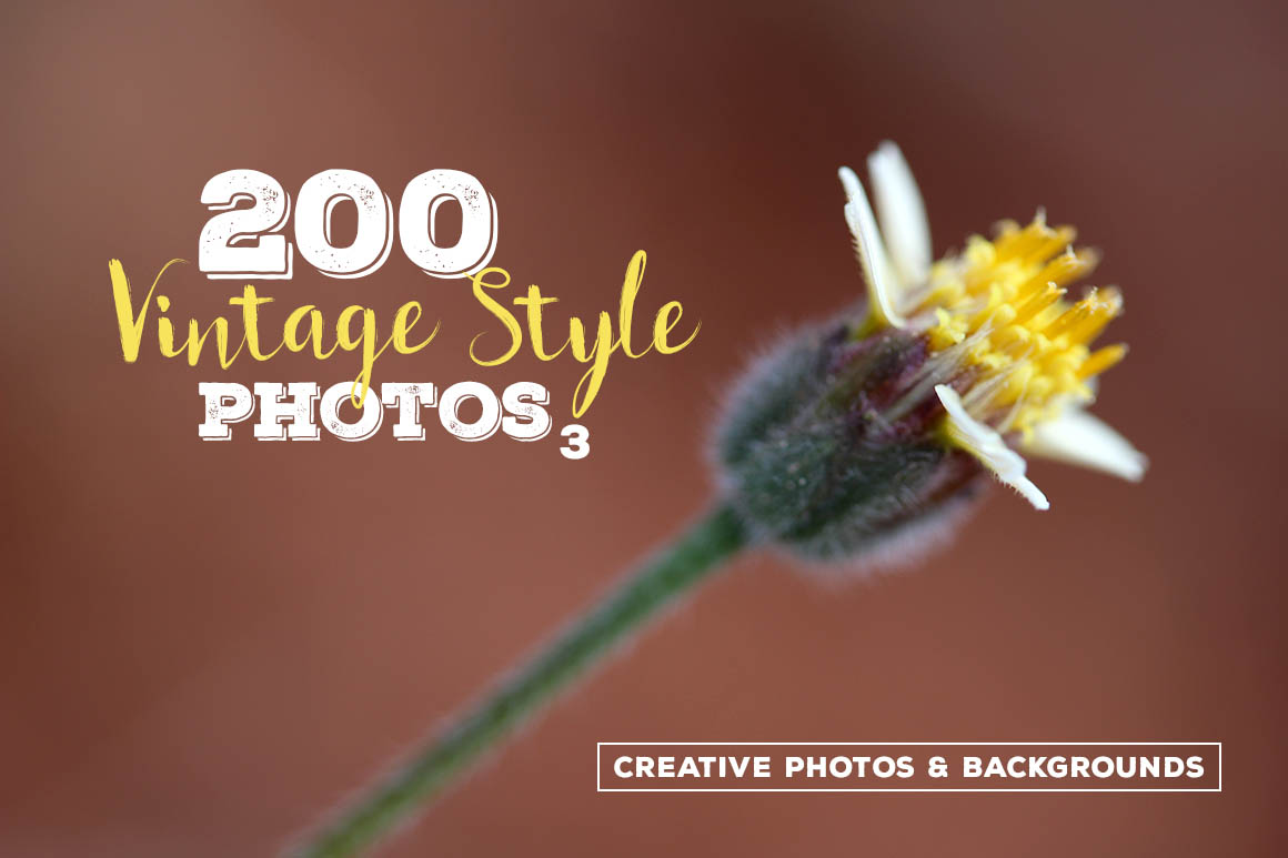vingtage style photos creative photos and backgrounds
