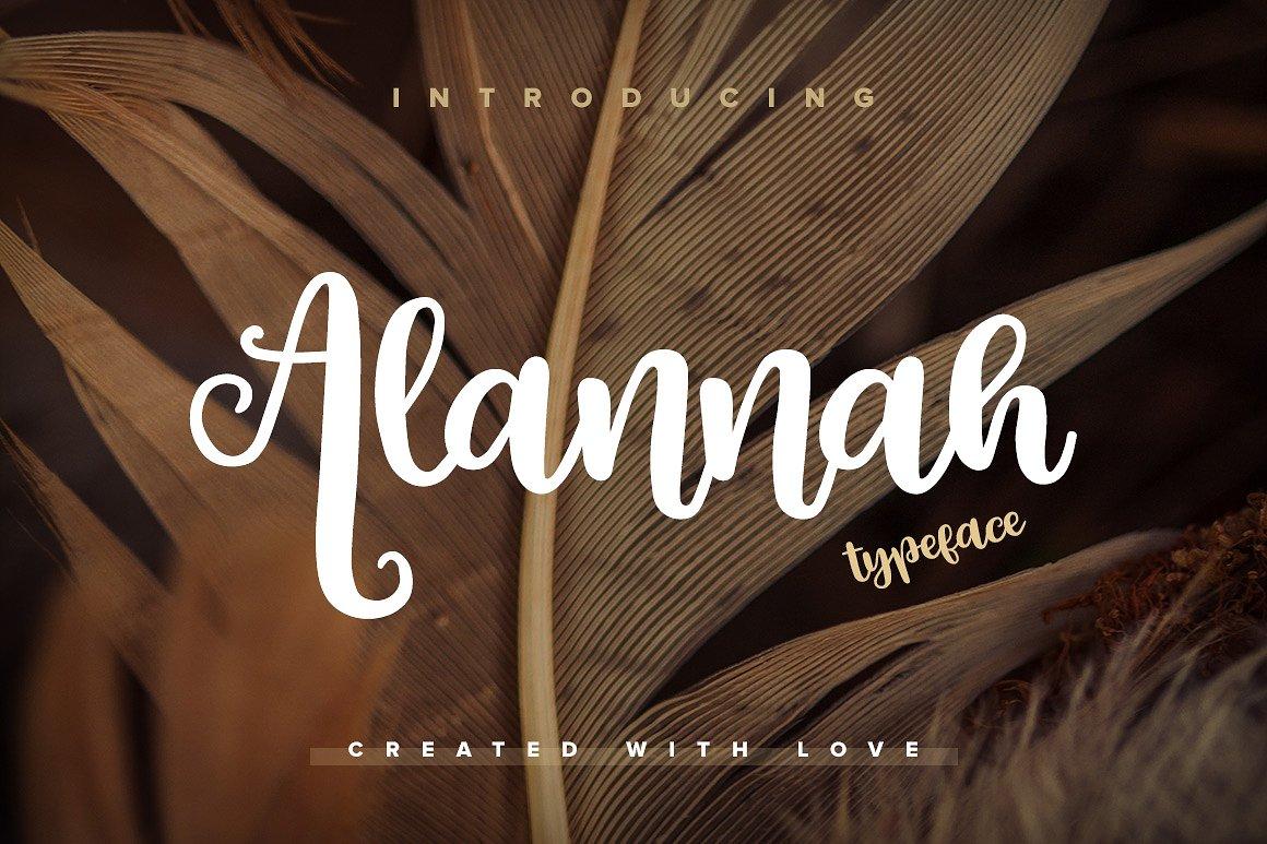 Alannah Script Font1