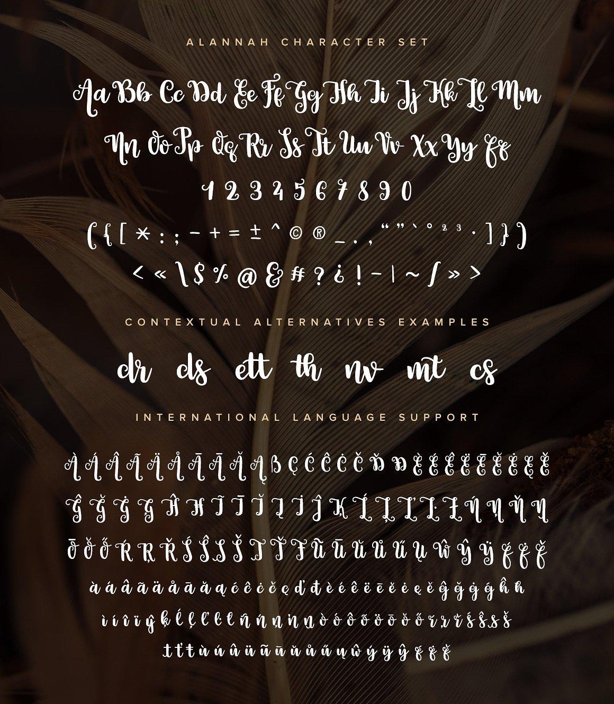 Alannah Script Font3