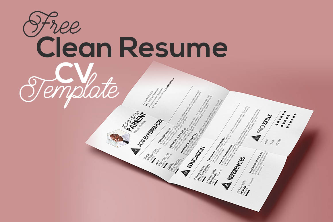 Free Clean Resume Cv Template  DealjumboCom  Discounted Design