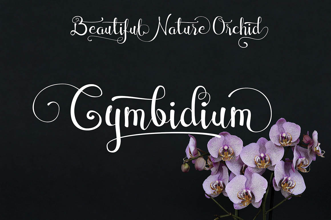 Cymbidium1
