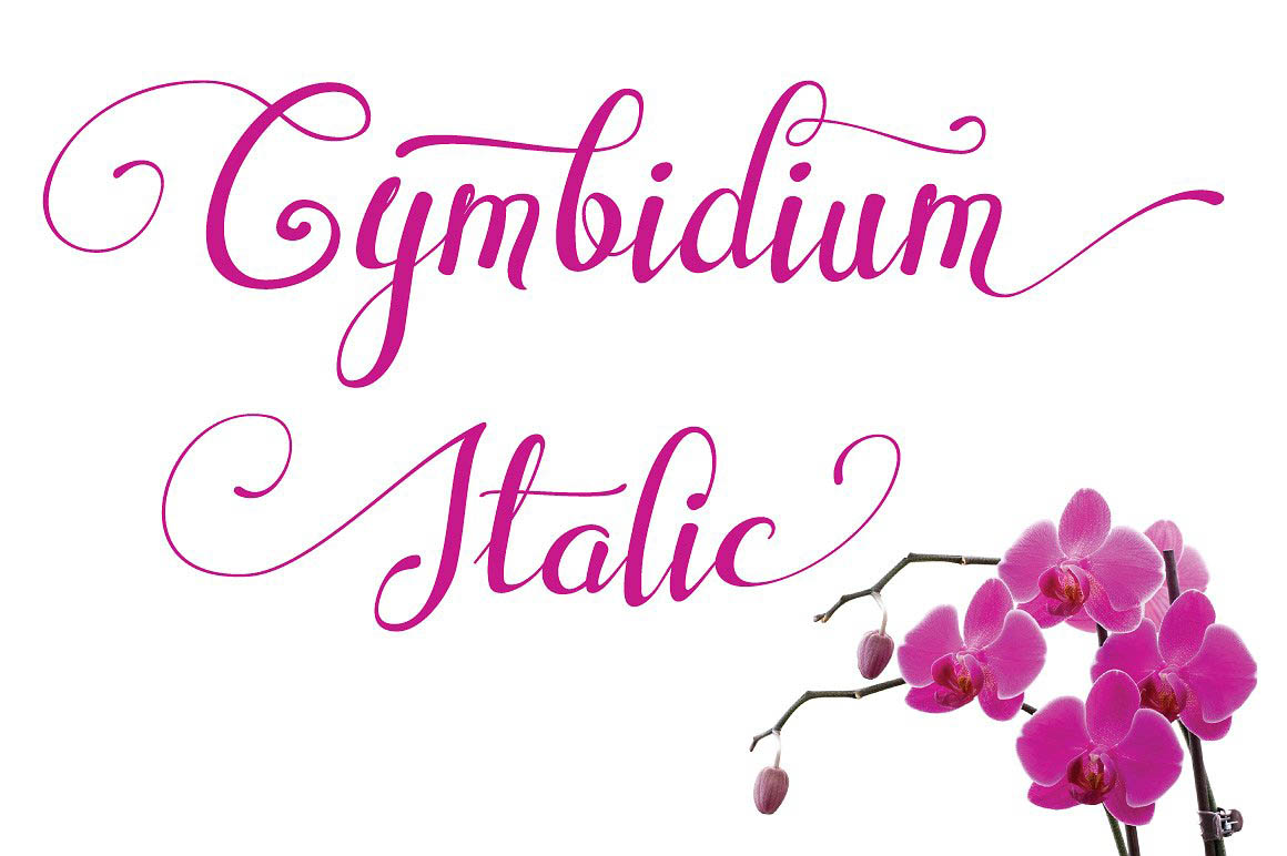 CymbidiumItalic1