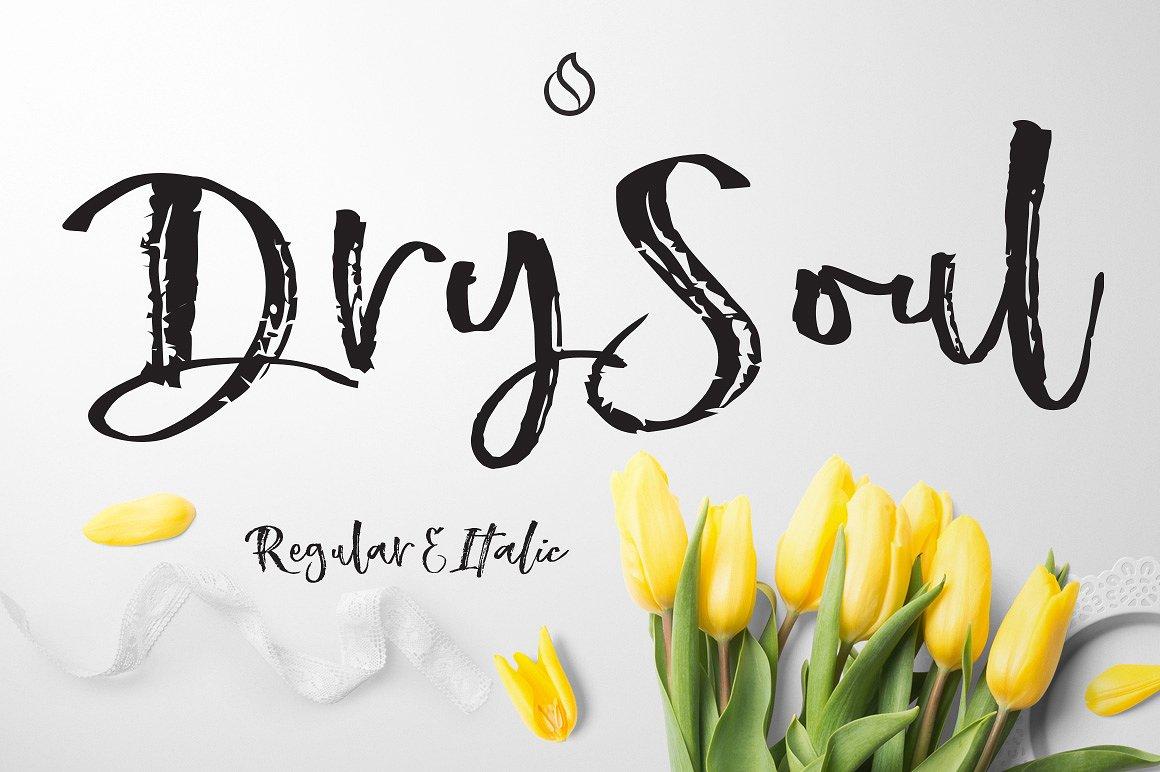 DrySoul1