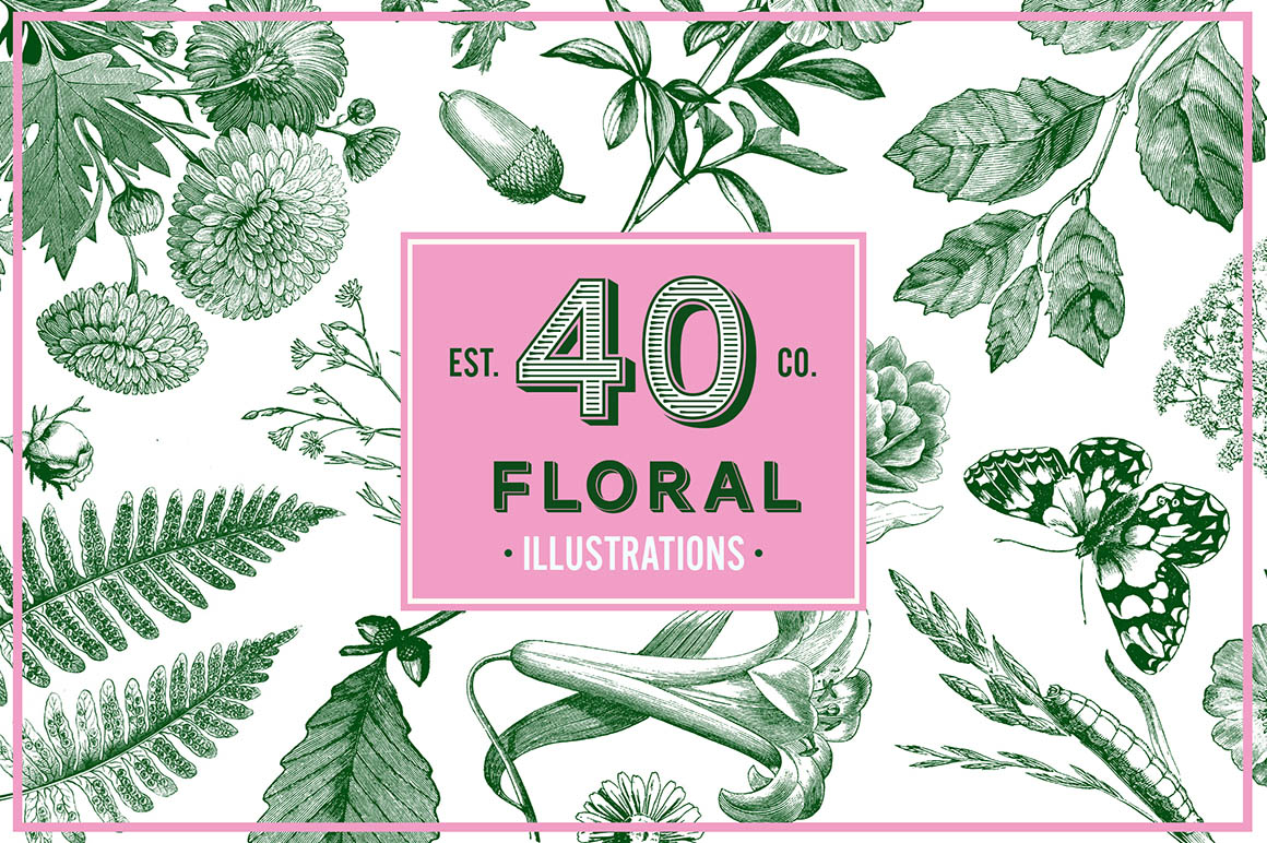 Floral Vintage Vector Illustrations 01