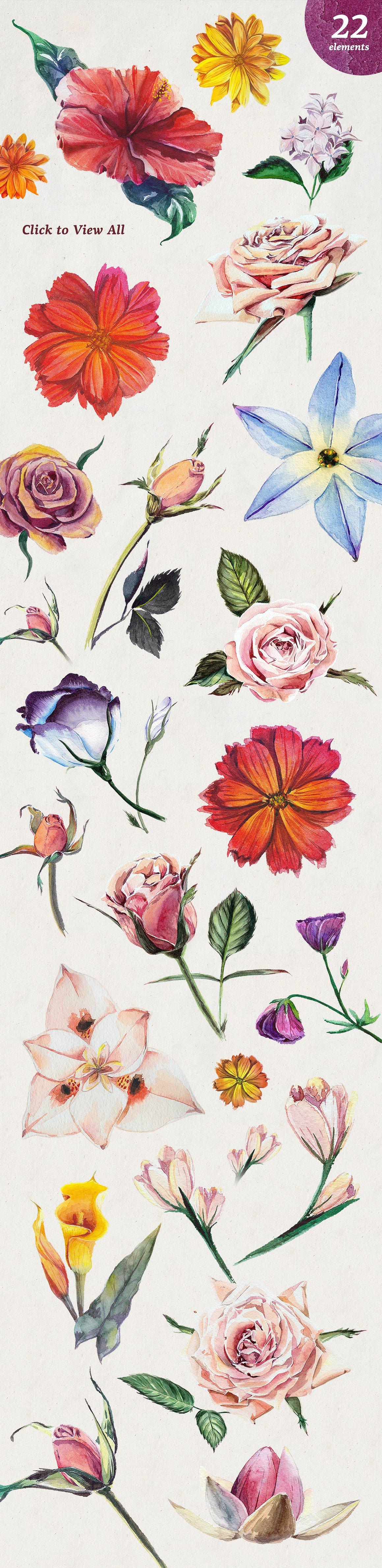 Florist Watercolor Flowers Set2