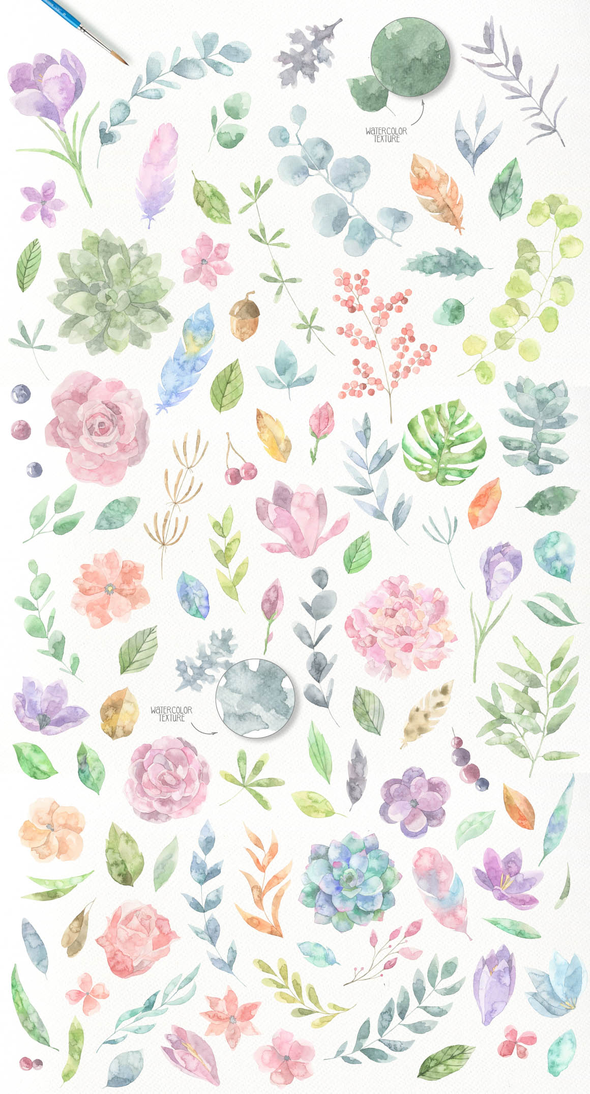 Floristic_Collection-main-image3