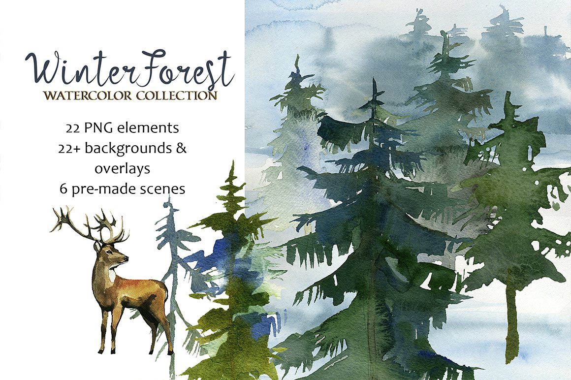 ForestFirTrees1