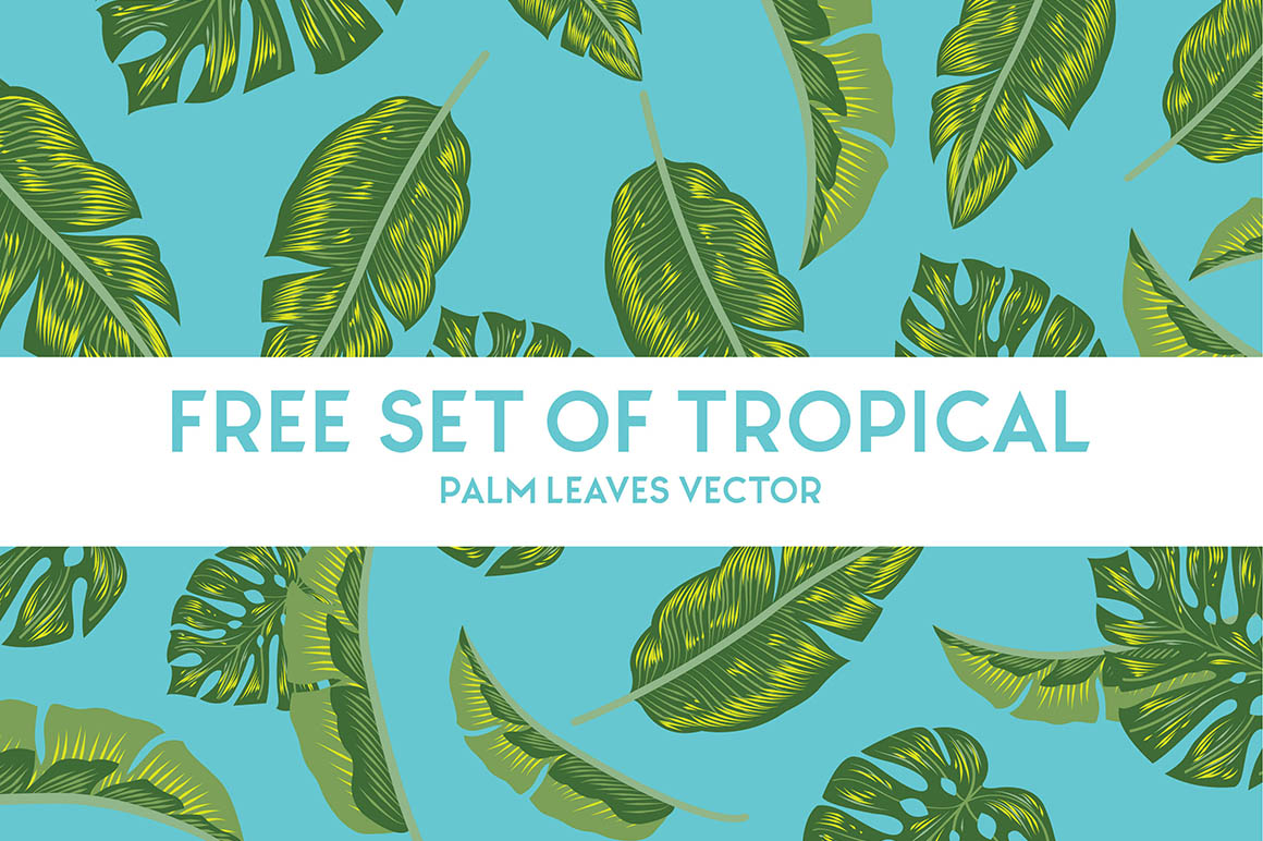 Free Set of Tropical Palm Leaves Vector 1