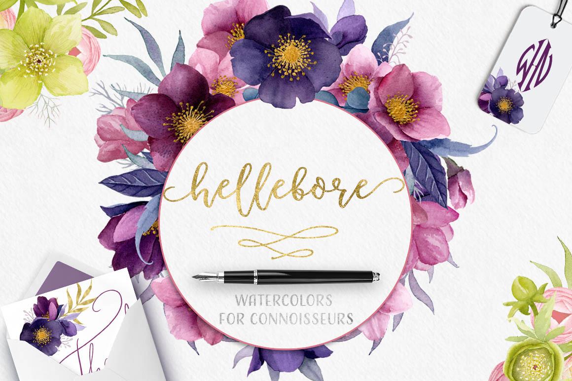 Hellebore Flowers Watercolor Set 1