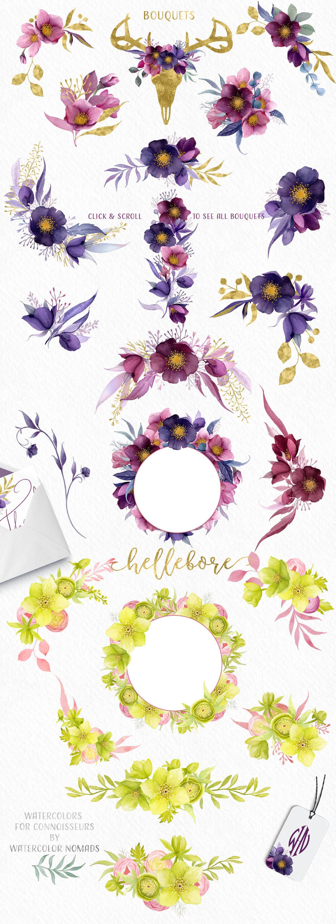 Hellebore Flowers Watercolor Set 2