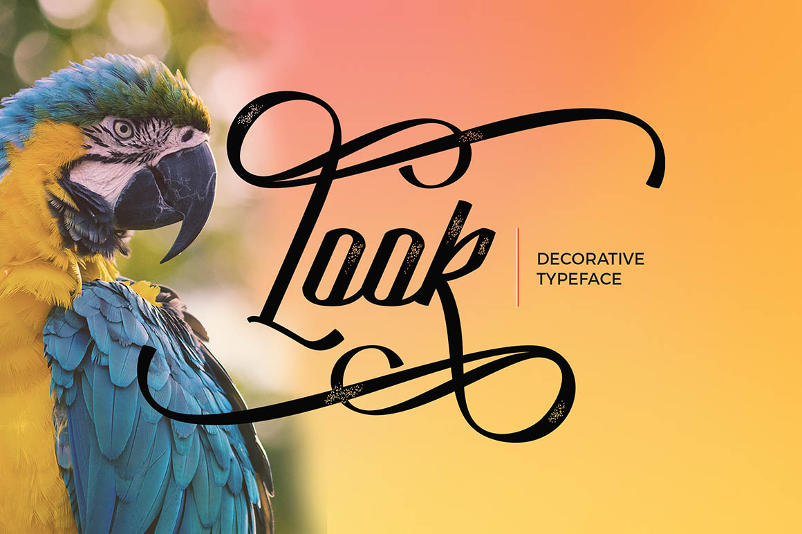 looktypeface1