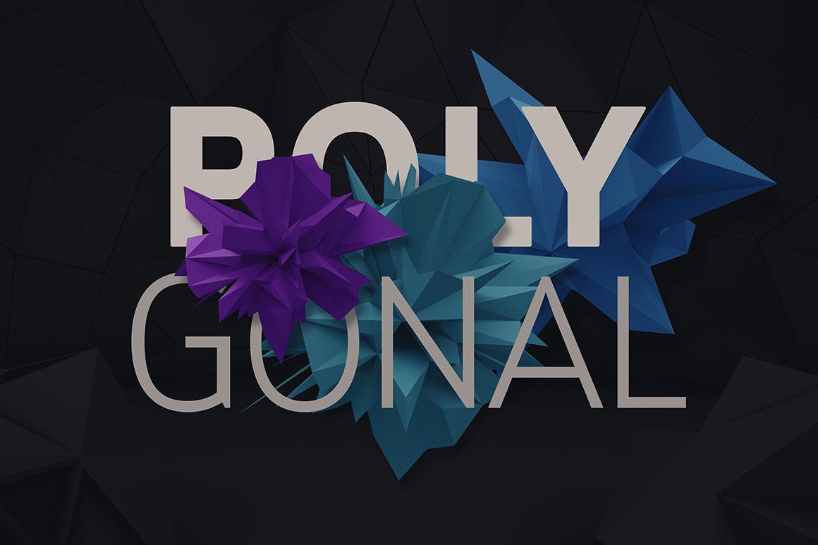 PolygonalToolkit02
