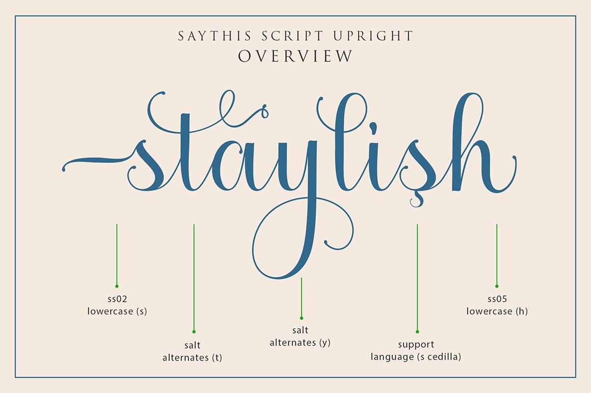 Saythis2