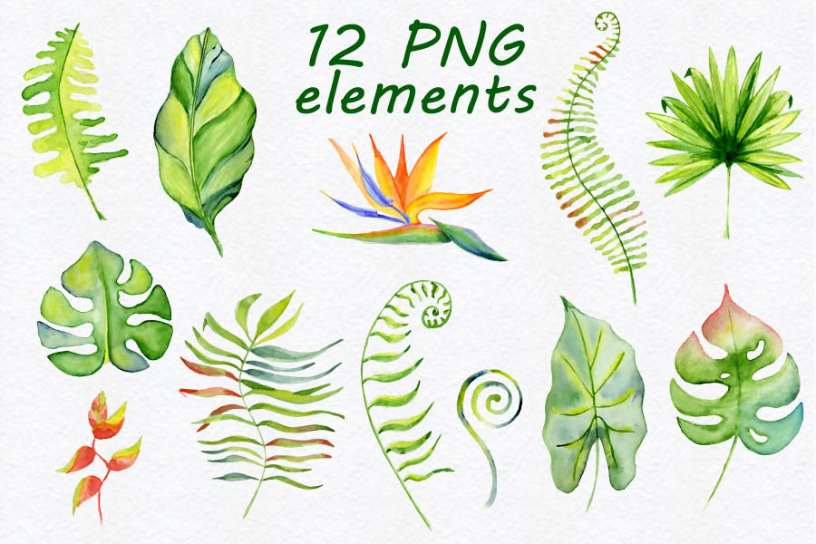 Tropical-leaves-Watercolor-clipart_Evgeniias-art_131217_prev02