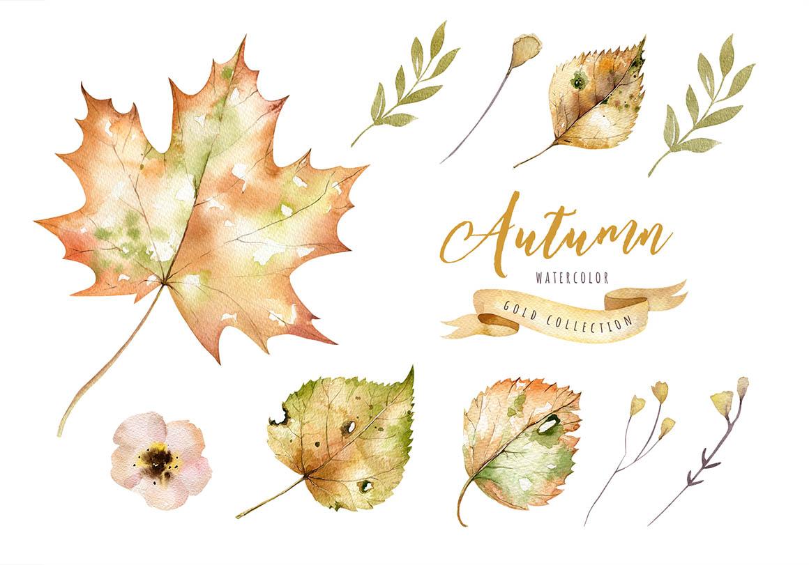 autumn_cover3