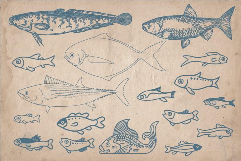 fish_Screen_4