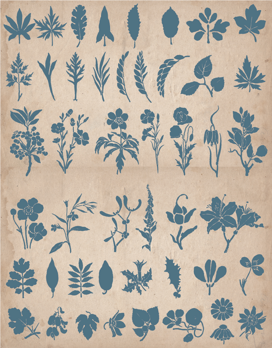 floral_screen_5