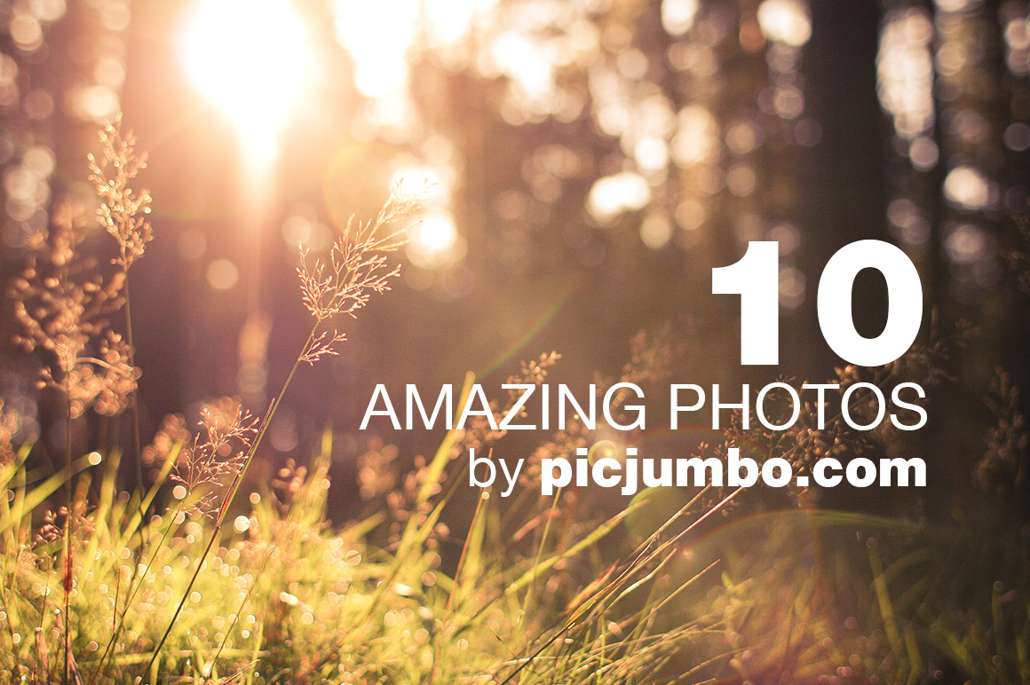Free Photo Bundle