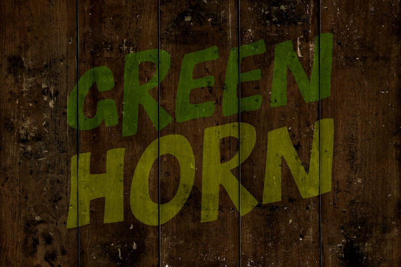 greenhorn4
