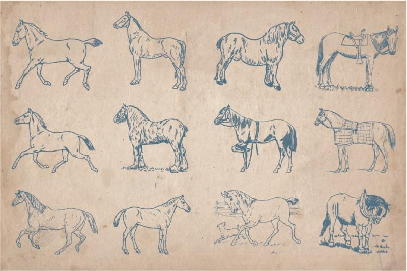horses_screen_3